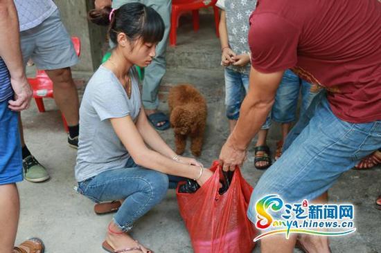 吉小雪的一只宠物狗被撞死后,家人将小狗的尸体装在塑料袋中放在冰箱里保存。(三亚新闻网记者邓松摄)