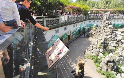 2日,成都动物园,游客不顾禁止标语,纷纷向动物喂食。