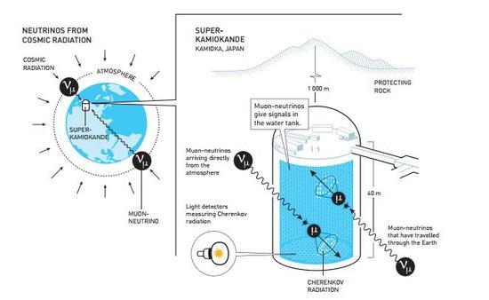 """超级神冈探测器主要探测大气中微子。当一个中微子与巨型水槽中的水分子发生相撞时就会产生一个转瞬即逝的带电粒子。这一过程将产生所谓""""切伦科夫光"""",而这种闪光将被安装在水槽周围的探测器捕捉到。这种切伦科夫光的形态和强度能够告诉科学家们发生碰撞的中微子的类型以及它的来源。测量结果显示来自头顶上方大气中的μ中微子数量要比来自脚底下,穿越整个地球而来的中微子数量更多,这一结果表明那些穿越整个地球的μ中微子拥有足够的时间发生了某种转变"""