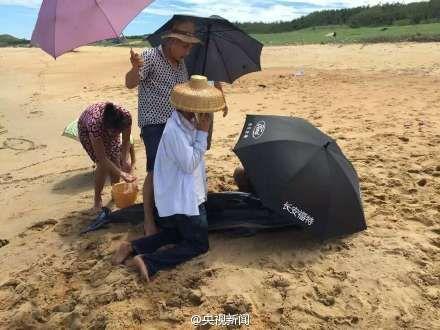 村民自发救助岸边搁浅海豚