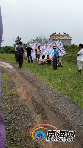 家属搭建临时帐篷准备安葬被牛撞死的男子。