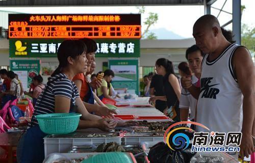 游客选购海鲜。南国都市报记者贺立樊摄