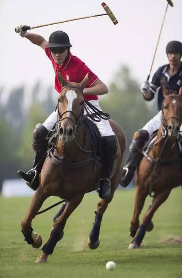 """野骑,你看到英女王更多是与老公 是野外休闲骑乘的缩写,不是""""野图片"""