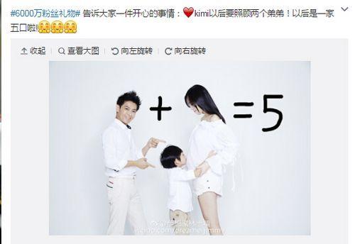 林志颖微博截图