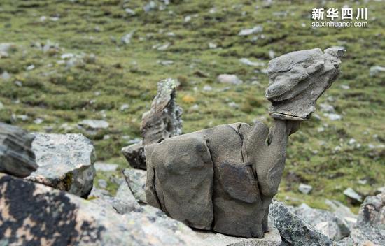 奇石滩中形态各异的奇石(10月8日摄)。