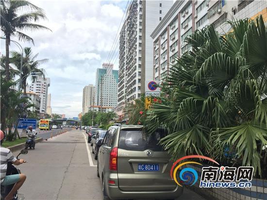 龙华路免费临时停车位标志牌被树木遮挡(南海网记者高鹏摄)