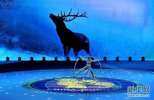 在第15届中国吴桥国际杂技艺术节闭幕式上,加拿大马戏艺术家在表演《滚环》。