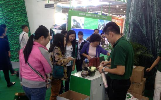 图为森林旅游节海南馆内 观众在品尝海南三大名茶和咖啡