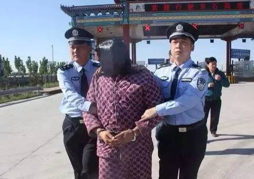 ▲ 犯罪嫌疑人被押回河北