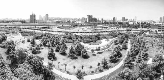 北三环生态廊道