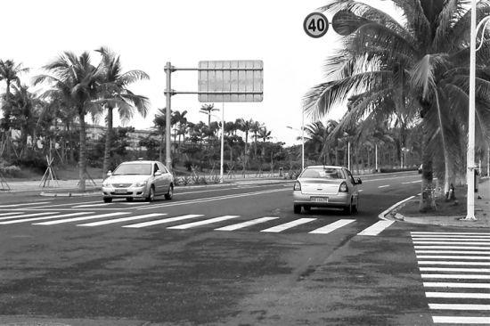 海口碧海大道上几辆教练车在缓慢行驶。