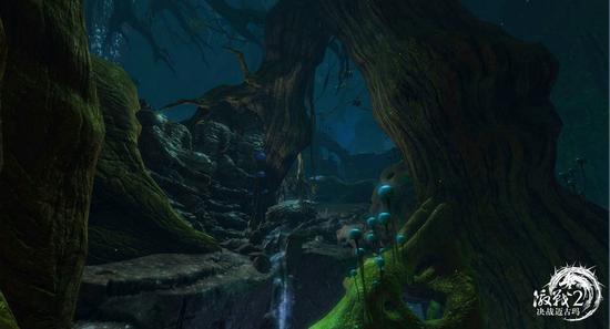 图2:迈古玛丛林