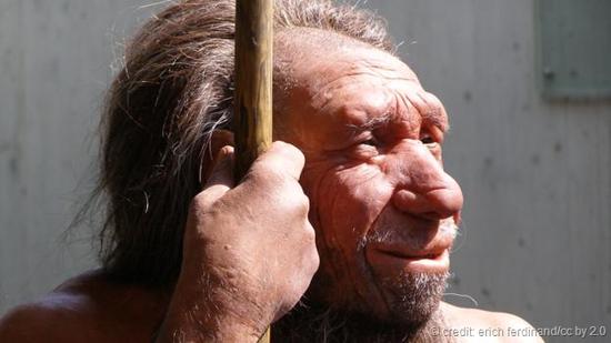某些人的遥远祖先。