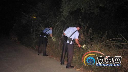 民警围捕野猪。南国都市报记者石祖波摄