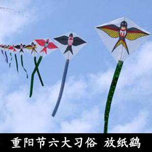 重阳风筝简笔画