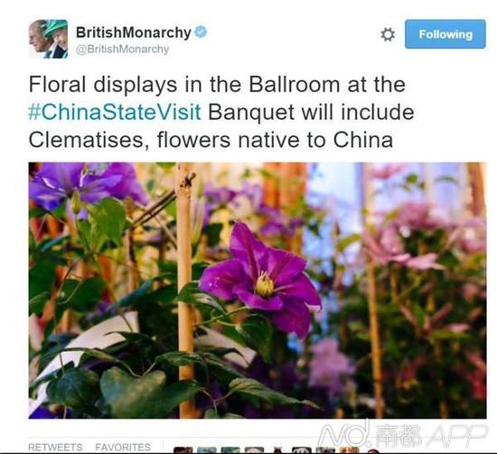 此次国宴的花饰摆设包括铁线莲,其起源地在中国。