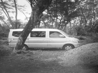 被嫌犯藏在树林里的面包车