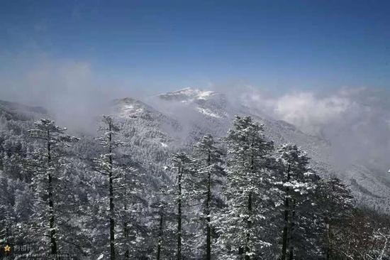 神农架首场雪扮靓美景