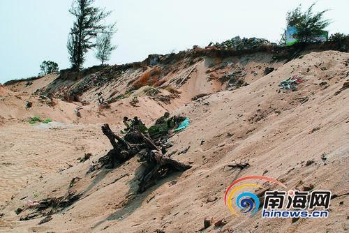 陆砂被盗挖,植被遭破坏。 (资料图片)