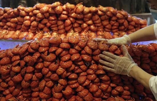 中国工资水平提高,刺激了对名贵海鲜的需求,例如龙虾。图片来源:美联社