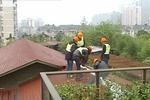 萧山上千平米违章花园被拆除