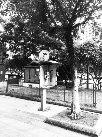 海口街头的公共电话亭