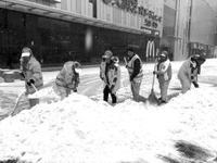 哈尔滨3万清雪大军迎战初雪 主次干路已经见亮