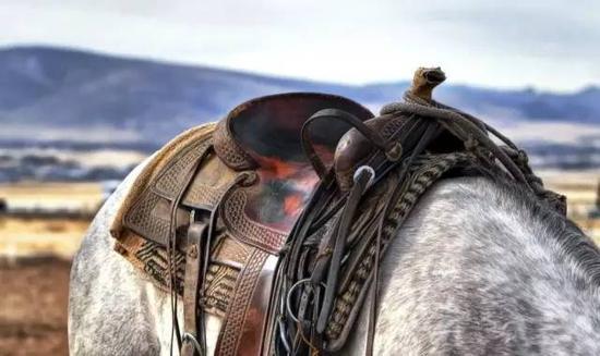 英国古典马术使用的马鞍,可分为马术鞍、障碍鞍、与一般骑乘用的综合鞍三种, 设计与形状有一点不太一样。骑手除了因不同目的选用不同的鞍以外,也应依自己的体型选用适当尺寸的鞍。   脚蹬与脚蹬带PEDAL