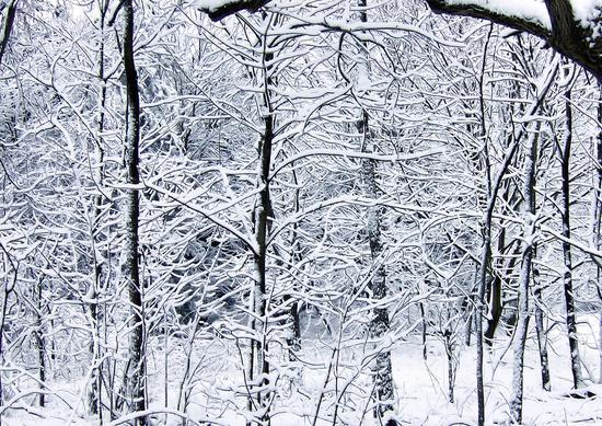 互联网初创企业如何挨过寒冬高清图片