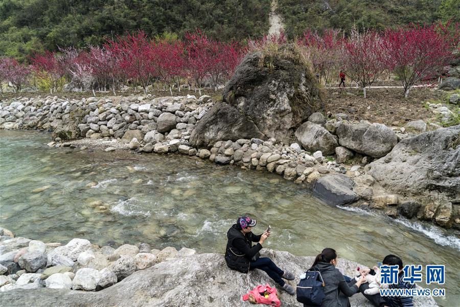 中国大学MOOC:\西瓜花单生,着生在叶芽间,花单性,少有两性花,为典型风媒花。\;