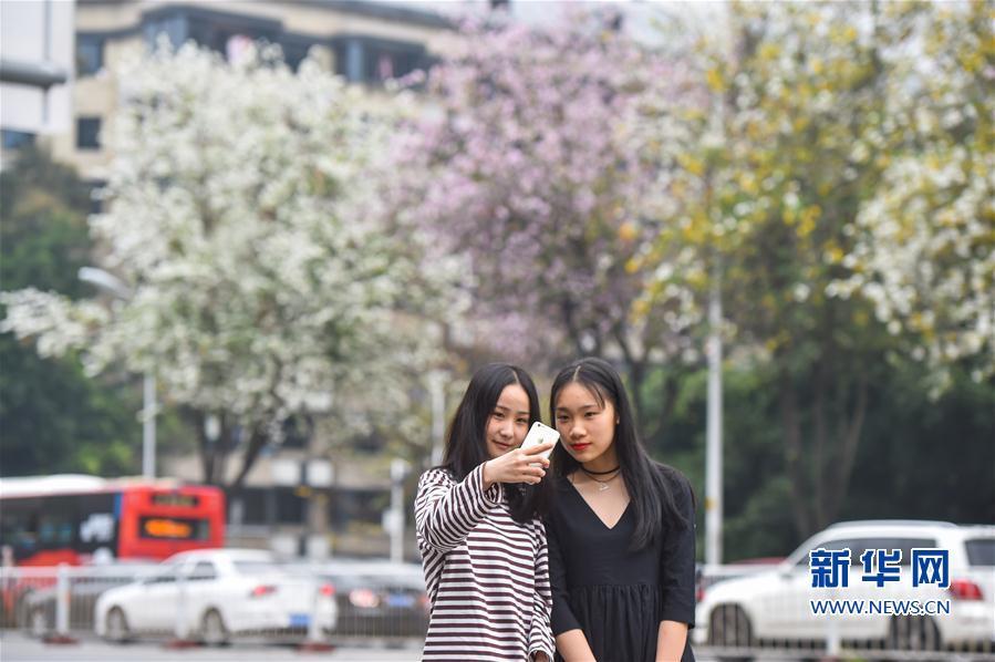 platform lifts china