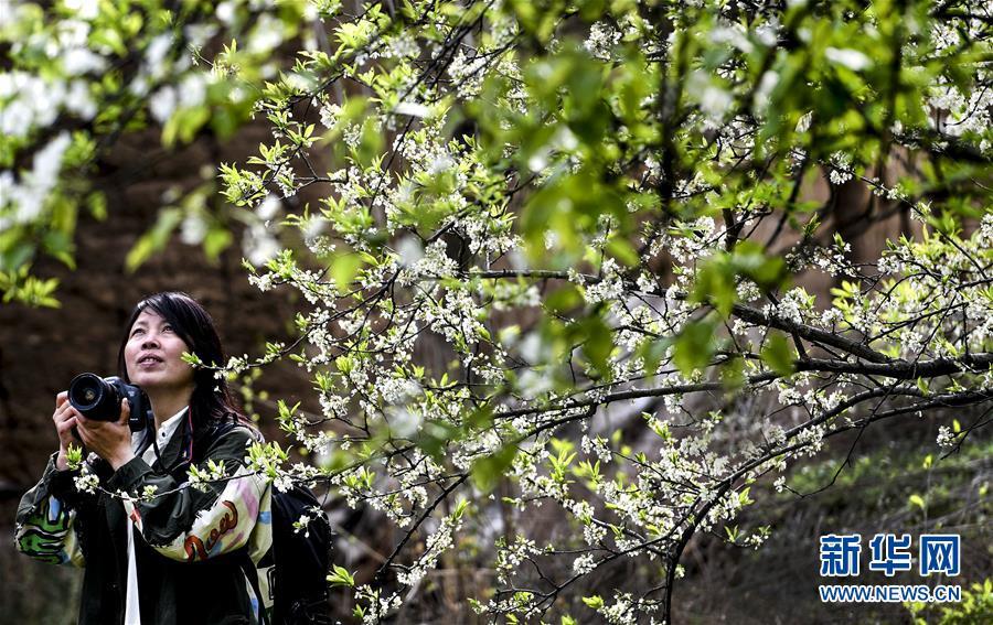 德仁天皇即位首次发表讲话 日本开启令和时代