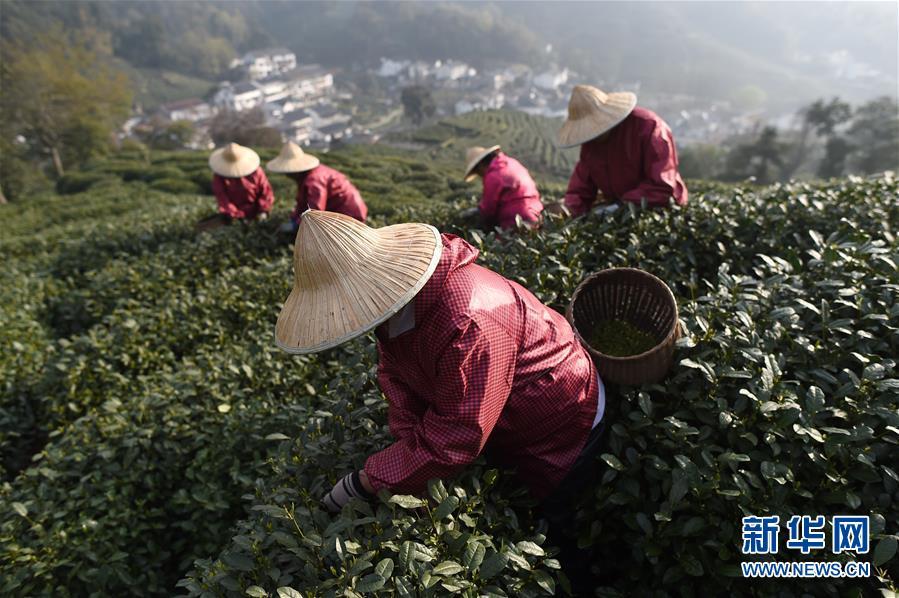 北京开学后在校需要戴口罩吗?您关心的开学热点问题解答