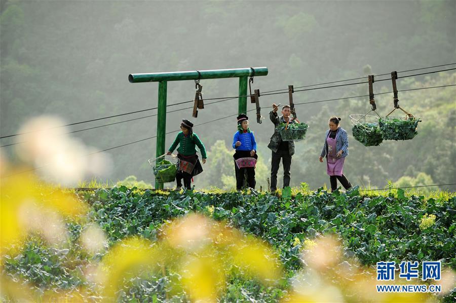 缅甸一矿区发生塌方 居民称200人被埋