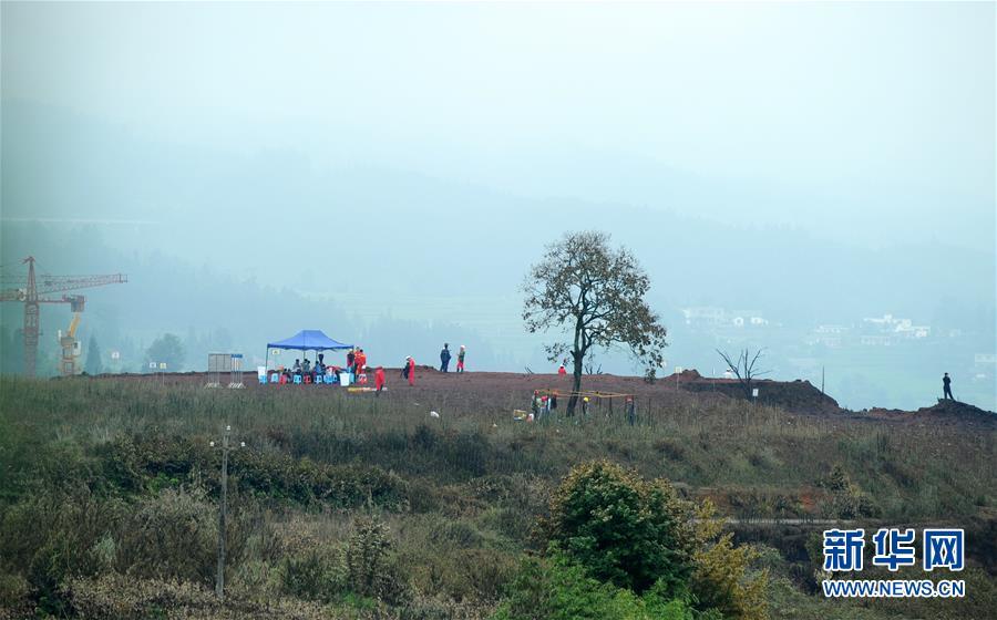 七旬夫妻养猪开垦撂荒地种30亩丹参,守着大山也要把日子过红火