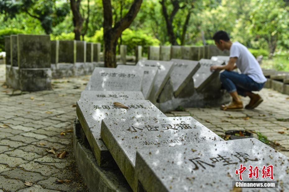 四川省地震局:北川4.6级地震是汶川余震区1次正常起伏活动