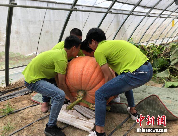 """安图县九龙社区开办全州首家""""康养老年餐厅"""""""