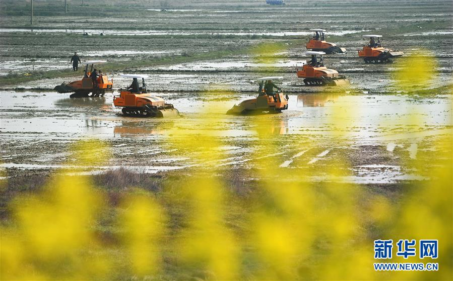 美阿帕奇直升机服役33年仍居榜首 中国武直差在哪