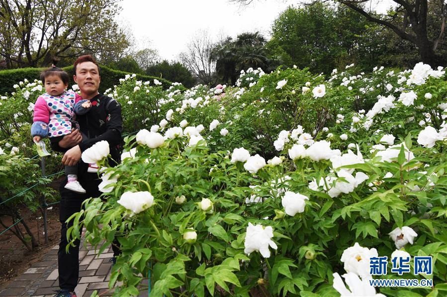 重庆公安局原局长下属被双开