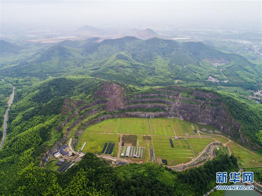 中国足球直播体育nba直播下载