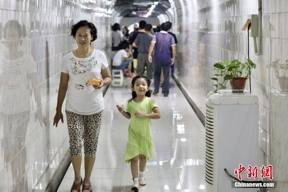 中国足球小将河豚直播在哪看