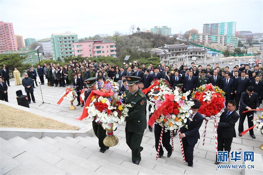 成群出没!广东频见海上大熊猫中华白海豚