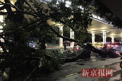 """广州:空了地铁,不空的街 丨聚焦台风""""山竹"""""""