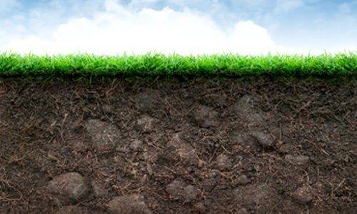 """土壤治理需万亿资金!全国政协委员蓝闽波:土地也应有""""身份证"""",才能对污染企业和个人追责"""