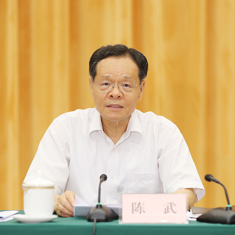 陈武在全区重大项目建设和政府债券工作电视电话会议上强调