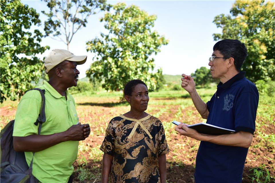 中国农耕小技术 坦桑玉米大丰收--中国农业大学教授李小云教坦桑尼亚农民种玉米