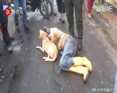 一名男子醉倒哥伦比亚街头影响了交通,他的宠物狗守护在身边不许