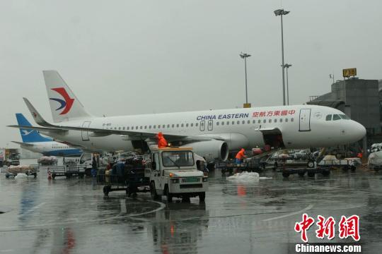 雷暴天气致成都机场众多航班延误。 王鹏 摄