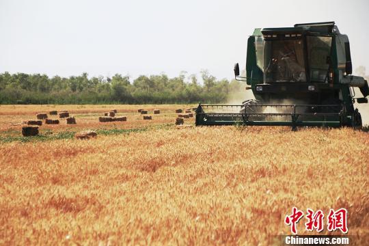 商务部:继续以符合世贸规则方式管理农产品进口关税配额