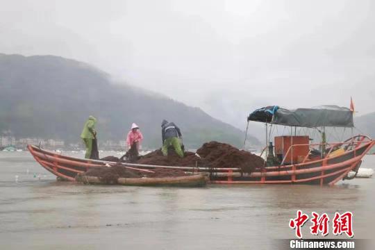 福建宁德推进海上养殖综合整治 清退各类渔排5万余口